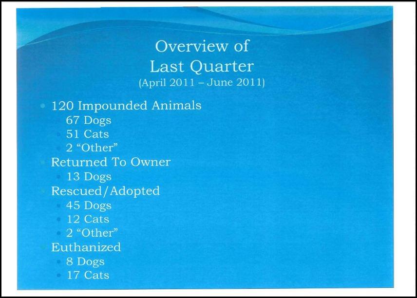 Animal Control 11