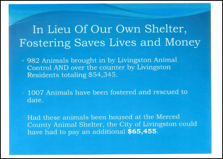 Animal Control 15
