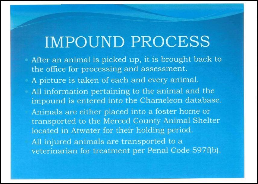 Animal Control 5