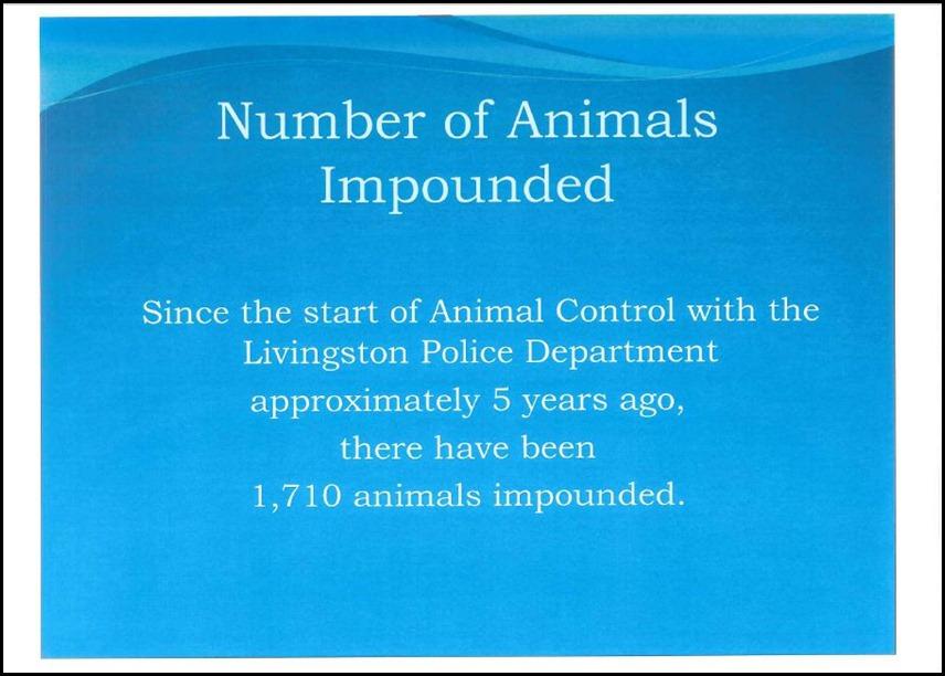 Animal Control 7